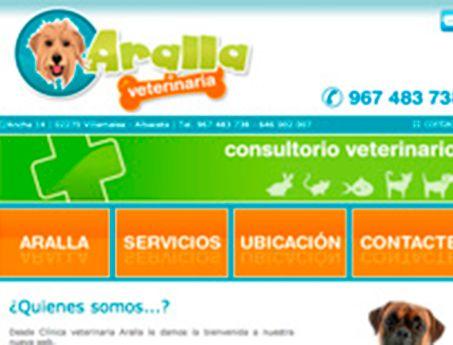 paginas web baratas